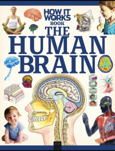 How It Works – Book The Human Brain 2020