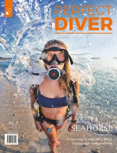 Perfect Diver – January-February 2020