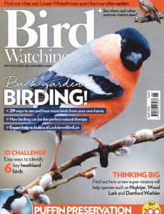 Bird Watching UK – June 2020