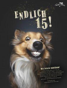 Dogs – Mai 2020