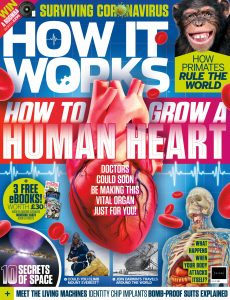 How It Works – Issue 138, 2020