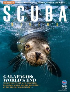 Scuba Diving – May 2020