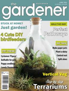 The Gardener South Africa – June 2020