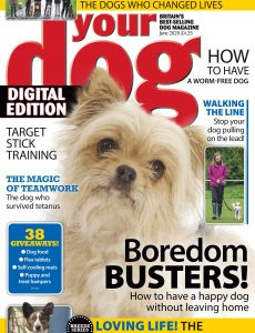 Your Dog – June 2020