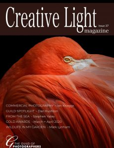 Creative Light – Issue 37 2020