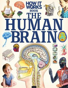 How It Works The Human Brain – First Edition, 2020