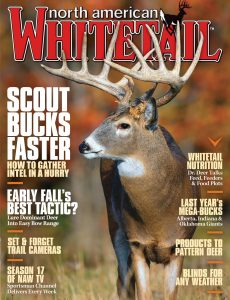North American Whitetail – July 2020