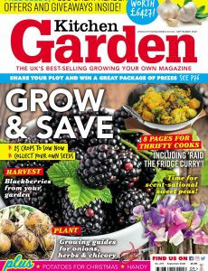 Kitchen Garden – September 2020