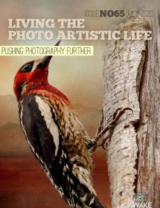 Living The Photo Artistic Life – July 2020