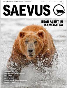 Saevus – December 2019-February 2020