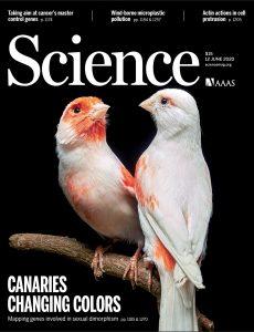 Science – 12 June 2020