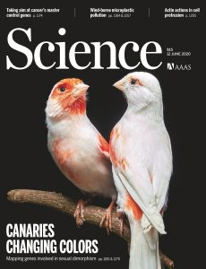 Science – June 12, 2020