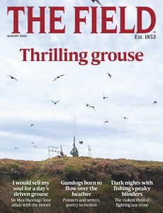 The Field – August 2020