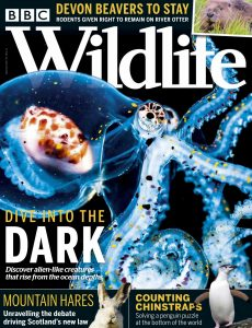 BBC Wildlife – September 2020