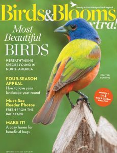 Birds and Blooms Extra – September 2020