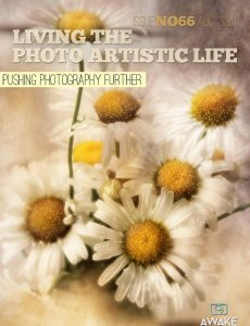 Living The Photo Artistic Life – August 2020