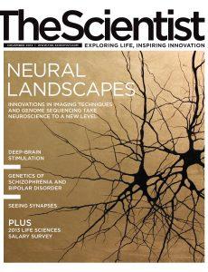 The Scientist – November 2013