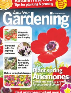 Amateur Gardening – 19 September 2020