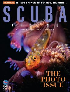 Scuba Diving – September-October 2020