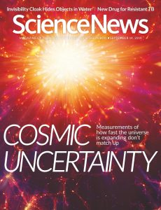 Science News – 14 September 2019
