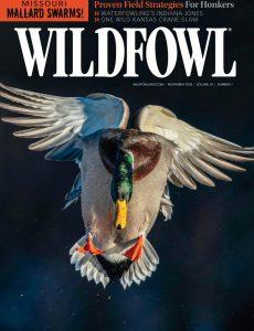 Wildfowl – November 2020