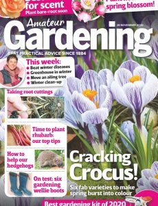 Amateur Gardening – 28 November 2020