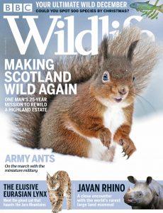 BBC Wildlife – December 2020