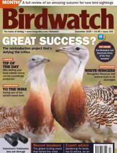 Birdwatch UK – December 2020
