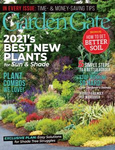 Garden Gate – January 2021