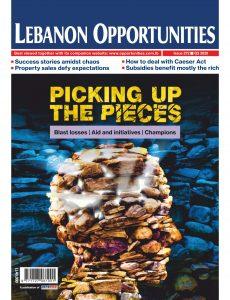 Lebanon Opportunities – November 2020