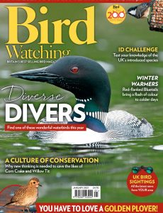 Bird Watching UK – January 2021