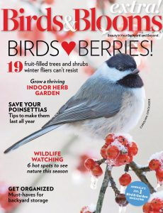 Birds and Blooms Extra – January 2021