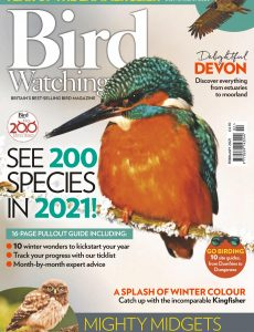 Bird Watching UK – February 2021