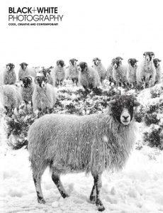 Black + White Photography – Issue 248 – January 2021
