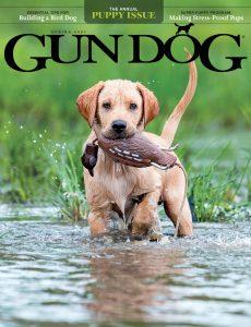 Gun Dog – Spring 2021