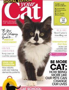 Your Cat – August 2020
