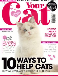 Your Cat – February 2021