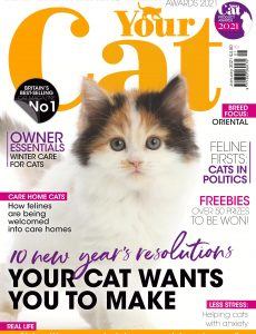 Your Cat – January 2021