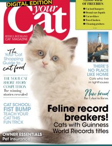 Your Cat – July 2020