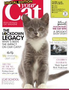 Your Cat – October 2020