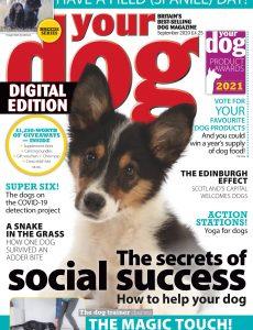 Your Dog – September 2020