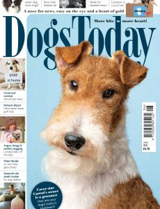 Dogs Today UK – June 2020