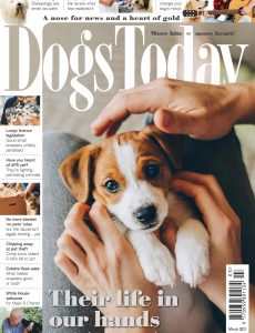 Dogs Today UK – March 2021