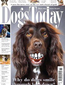 Dogs Today UK – November 2020