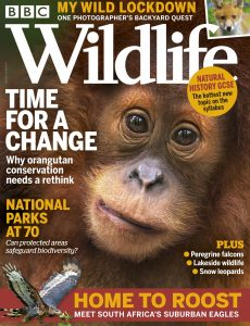 BBC Wildlife – April 2021
