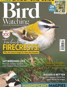 Bird Watching UK – April 2021