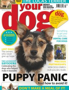 Your Dog – March 2021