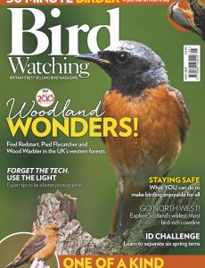Bird Watching UK – May 2021