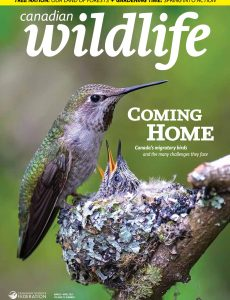 Canadian Wildlife – March-April 2021