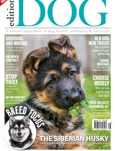 Edition Dog – Issue 31 – 29 April 2021